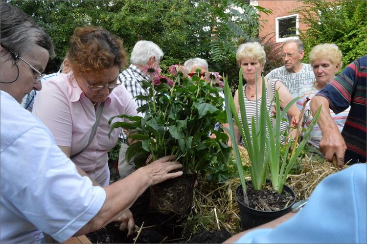 Seniorenförderung 2015 Gartengruppe Wandsbek, Foto: BGFG